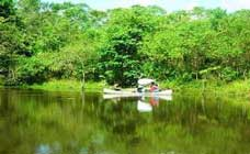 Pucallpa Tours
